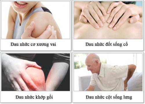 Glucosamine mang đến công dụng giảm đau xương khớp hiệu quả