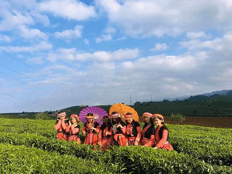 Chụp ảnh check-in tại đồi chè Mộc Châu